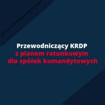 Przewodniczący KRDP z planem ratunkowym dla spółek komandytowych